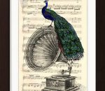 pat-byrne-gramaphone-book-page-peacock