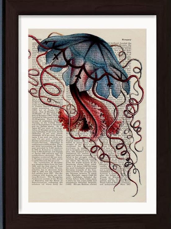 Ernst Haeckel Jellyfish Prints