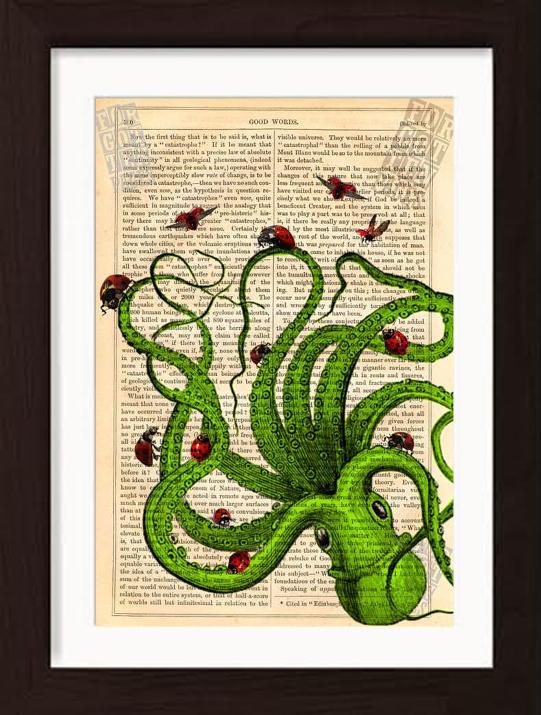 pat-byrne-antique-book-print-octopus-green
