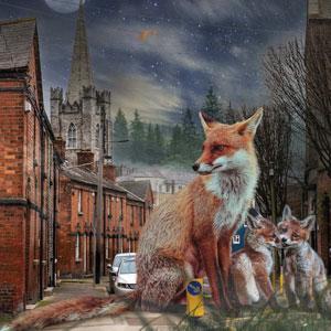 Fox Family Dora Hurley